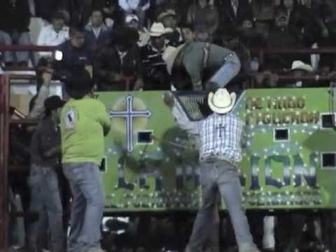¡¡LOS TOROS BARBAROS!! de Rancho La Mision en Tepetlixpa Edo. Mex. 2013.