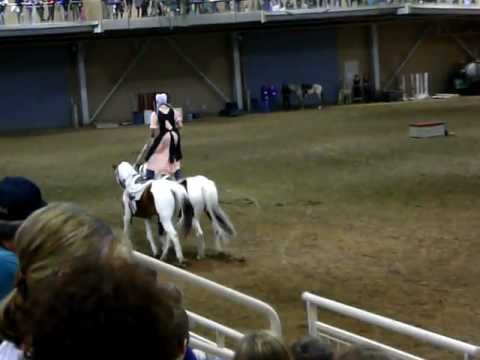 Amish girl Roman Riding At Pennsylvania Horse Wold Expo in Harrisburg Feb, 2012