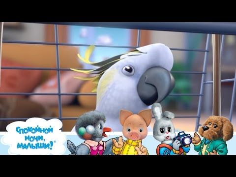 СПОКОЙНОЙ НОЧИ, МАЛЫШИ! 🐶 Енотовидная собака 🐕  Мультики для детей - Фиксики (видео)