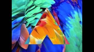 CHROMATICS - BIRDS OF PARADISE (AMTRAC REMIX)