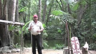 Daintree Australia  city photos : Secrets of the Daintree Rainforest Queensland Australia with Aboriginal Guide