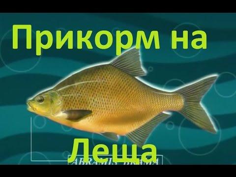диалог о рыбалке про леща