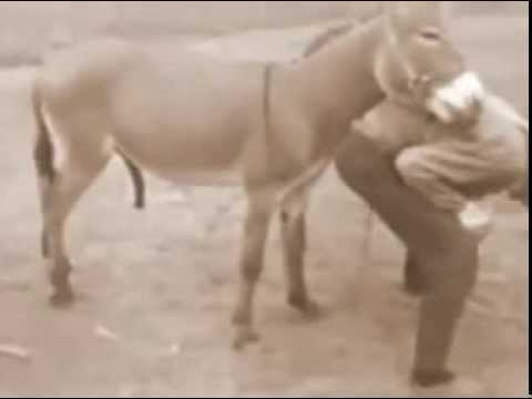 домашние видео секс таджикский-ыа1