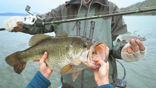 Fishing for Trophy Bass in Northern California! - NEW PB (Powered by LTB)