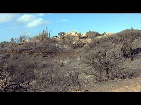 مصرع 10 أشخاص في حرائق الغابات بأسبانيا - فيديو