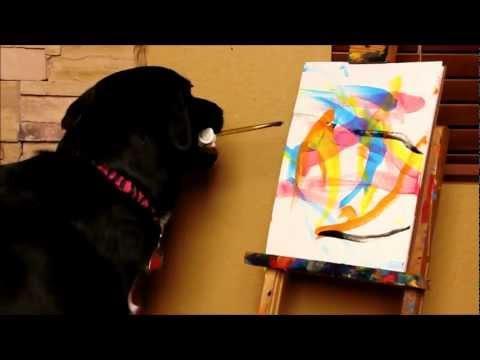 《狗界的畢卡索》狗狗也是會畫圖的!還很貴咧!