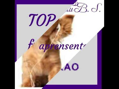 Top 10 frases de reflexão