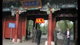 Пекински университет / Peking University BEIDA – 北京大学