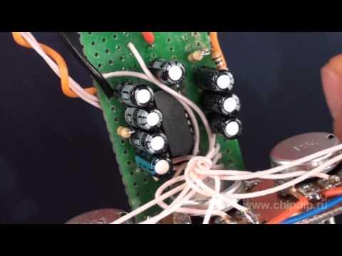 Как сделать инфузорию туфельку