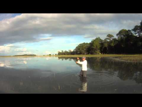 Flyfishing for Redfish in the Grass – SC