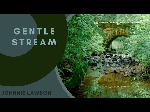 Nature Sounds Forest Sounds Birds Singing Sound of Water-Relaxation-Mindfulness-Meditation