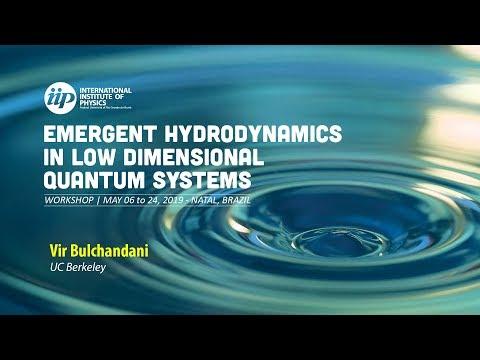 Hydrodynamics of integrable and near-integrable many-body systems - Vir Bulchandani