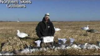 Squawk Box One Man And Five Decoys. Northern Skies Outfitters