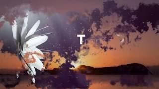 Manuel Le Saux & TrancEye Endless Horizon trance music videos 2016