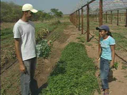 Programa VitaVida, do Servas e Governo de Minas, em Virgem da Lapa (Vale do Jequitinhonha)