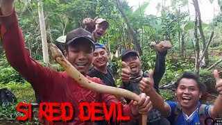 Video Mancing Belut Super Besar Bikin Geregetan MP3, 3GP, MP4, WEBM, AVI, FLV Desember 2018