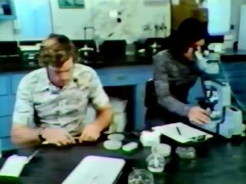 Desert Shrimp – 1976- Excerpts (5:40)