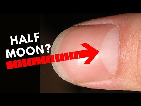 Do You Have Half Moon Shape On Your Nails?? -palmistry