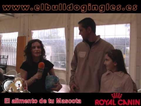 Quedada Nacional elbulldogingles Albaida 2010