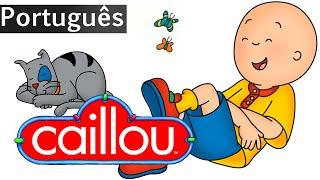 Inscreva-ser: http://bit.ly/1rqfPSY Caillou (Ruca em Portugal) é uma série de desenho animado infantil franco-canadense, lançado...
