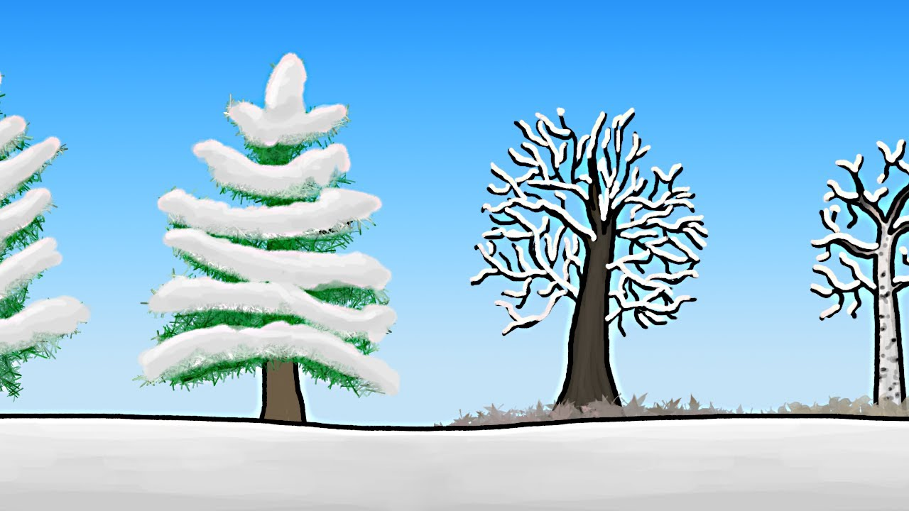 Video: How do trees survive in winter?