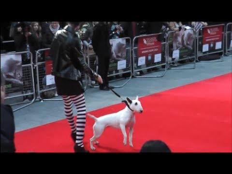 Frankenweenie Premiere Black & White Parade