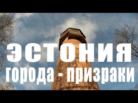 domashnee-video-on-ee-laskaet