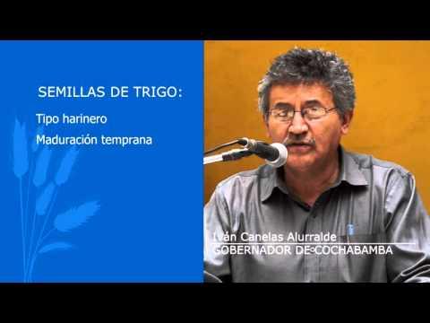 SPOT LIBERACIÓN DE SEMILLAS DE TRIGO