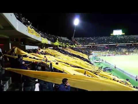 Peñarol !! La hinchada que gana partidos - Barra Amsterdam - Peñarol