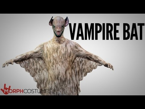 MorphCostumes - Vampire Bat