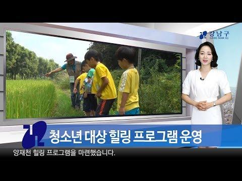 2018년 4월 첫째주 강남구 종합뉴스