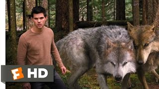 Video Twilight: Breaking Dawn Part 2 (3/10) Movie CLIP - A Wolf Thing (2012) HD MP3, 3GP, MP4, WEBM, AVI, FLV September 2018