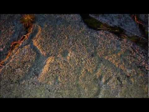 """""""Предки""""  - фильм о петроглифах и археологии Заполярья"""