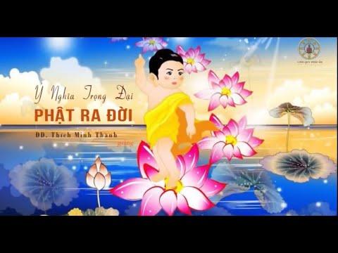 Ý Nghĩa Trọng Đại Phật Ra Đời  - Thích Minh Thành giảng