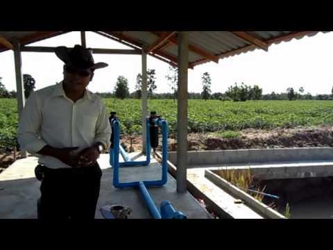 ระบบน้ำหยด - ระบบน้ำหยด การใส่ปุ๋ยไปพร้อมกับน้ำหยด & ปั๊มน้ำใช้แก๊ส...