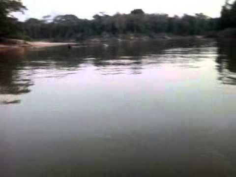 Pescaria rio paraguai porto estrela mt