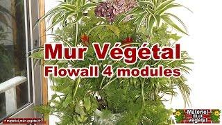 Mur Végétal intérieur 4 Flowall & arrosage automatique