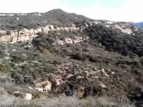 Laguna Coast Wilderness — Post Flood Geology and Fossils Support the Bible – 2013