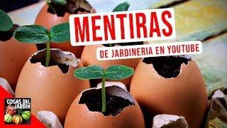 Video CONOCE LOS 10 PEORES CONSEJOS DE JARDINERIA QUE HAY EN YOUTUBE MP3, 3GP, MP4, WEBM, AVI, FLV September 2019