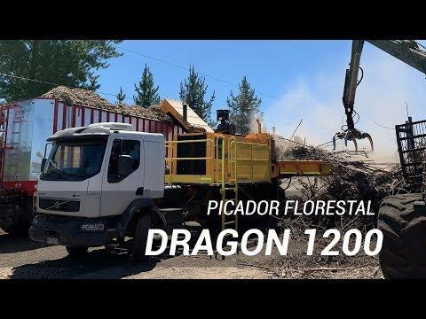 Picador Florestal Dragon 1200 trabalhando no Chile