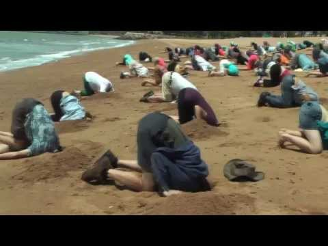 Heads in sand event: Townsville 'salutes'