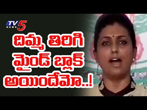 YSRCP MLA Roja Funny Counters to TDP MLAs and AP CM Chandrababu