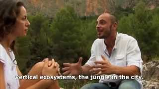 Vertical gardens & vertical ecosystems complete documentary.