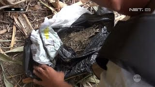 Video Detik detik Proses Penggerebekan Kampung Narkoba - 86 MP3, 3GP, MP4, WEBM, AVI, FLV Juni 2019