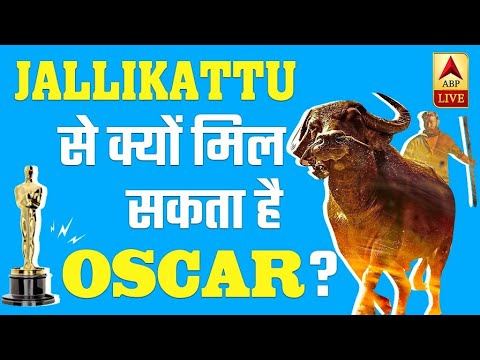 Jallikattu: Story Of A Malayalam Movie That Could Get India An Oscar! | ABP News