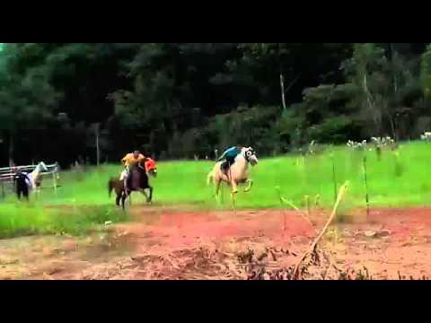 Evento em Barreirinha-AM revela cavalo corredor