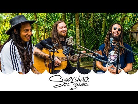 Iya Terra - Give Thanks (Live Acoustic) | Sugarshack Sessions