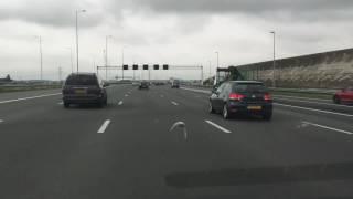Głąb na autostradzie