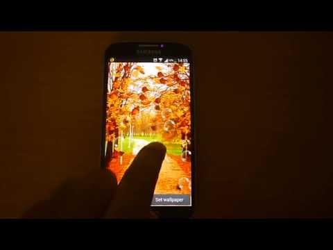 Video of Autumn Live Wallpaper