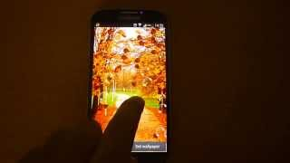 Autumn Pro Live Wallpaper YouTube video